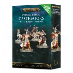 AGE OF SIGMAR SOUL WARS EASY TO BUILD Castigators
