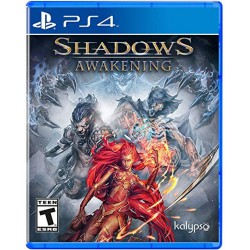 PS4 - Shadows Awakening