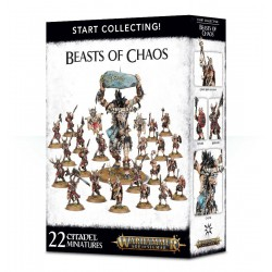 Warhammer Age of Sigmar - Start Collecting Beasts of Chaos