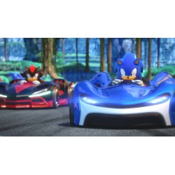 TEAM SONIC RACING (PS4)
