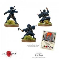 Ninja Blister Test of Honour