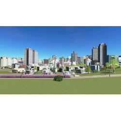 Cities Skylines Switch