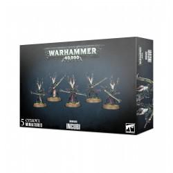 Drukhari Incubi Warhammer...