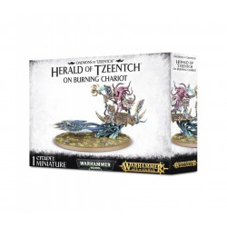 Herald of Tzeentch on...