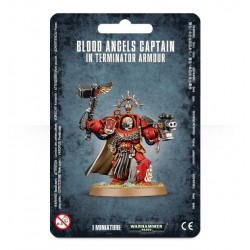 Blood Angels Captain In...