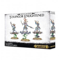 TZEENTCH ARCANITES TZAANGOR ENLIGHTENED/AGE OF SIGMAR