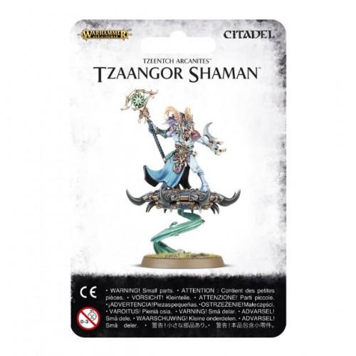 TZEENTCH ARCANITES TZAANGOR SHAMAN/AGE OF SIGMAR