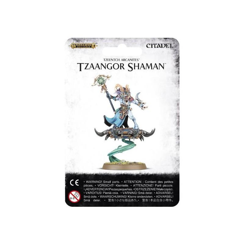 Age of Sigmar/TZEENTCH ARCANITES TZAANGOR SHAMAN